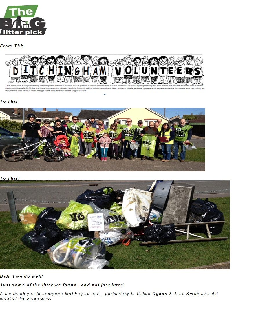The Big Litter Pick in 2013
